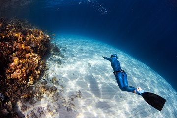 Wall Mural - Woman freediver in monofin glides in the sea over the sandy bottom and looks at the colorful coral reef