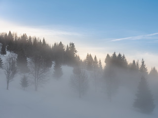 Poster Morning with fog Foggy winter day in the mountains