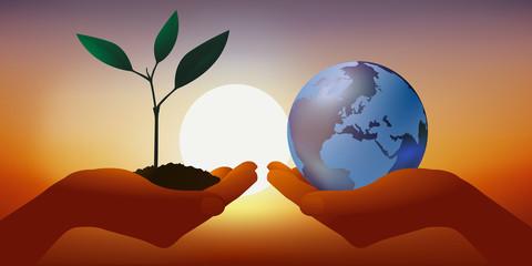 Concept de l'environnement avec une main qui présente une jeune pousse végétale représentant la vie et une autre portant symboliquement la terre pour rappeler le danger du réchauffement climatique