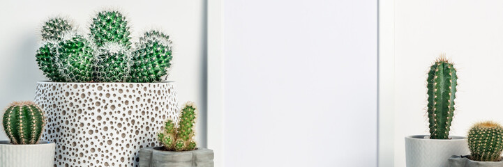 Cactus decoration in concrete and ceramic pots. White empty frame mockup. Space for text or graphics. Panoramic real photo