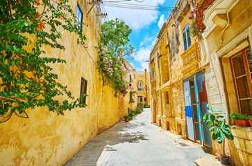 Plant decors in medieval stone town, Rabat, Malta