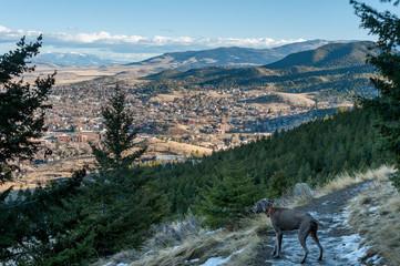 Panorama of Helena, Montana