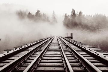 railroad, bridge, old, trestle, haze, forest, moody, black and white, vancouver island, bc, goldstream park, canada, fog, nature, atmosphere, trees, aesthetic, landscape, nature park, weather mood, we