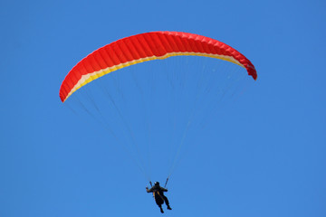 Wall Mural - Paraglider flying in a blue sky