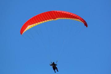 Fototapete - Paraglider flying in a blue sky