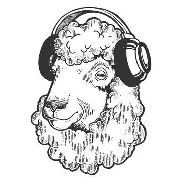 Sheep animal in headphones sketch engraving vector illustration. Scratch board style imitation. Black and white hand drawn image.