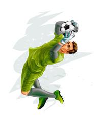 Football goalkeeper jump