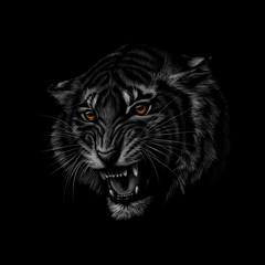 Door stickers Hand drawn Sketch of animals Portrait of a tiger head on a black background