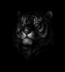 Keuken foto achterwand Hand getrokken schets van dieren Portrait of a tiger head on a black background