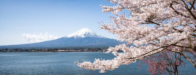 Wall Mural - Berg Fuji zur Kirschblüte im Frühling, Kawaguchiko, Yamanashi Präfektur, Japan