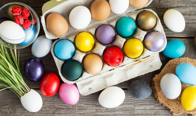Easter colored eggs in egg tray, young wheat sprouts from the shell, soft focus image