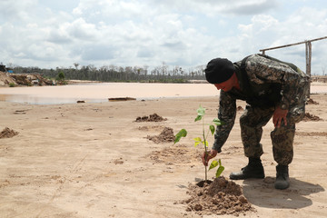 A member of the Peruvian military plants a tree at an illegal gold mining camp in Madre de Dios