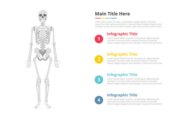 human skull infographics template with free space of text with various color and description - vector illustration