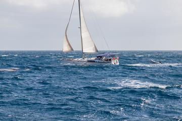 Saint Vincent and the Grenadines, sailboat at sea