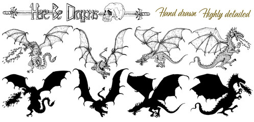 Set with hand drawn realistic detailed dragons and silhouettes on white. Vector sketch of tattoo fantasy concept and t-shirt design. Graphic line art illustration