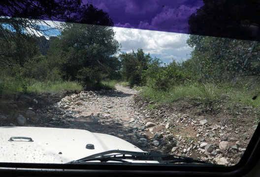 Looking out car onto a rocky dirt road