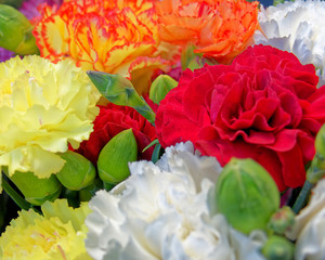 variety of colorful carnation flowers bunch, strong bokeh