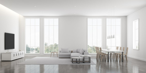 View of white living room in minimal style with furniture on bright laminate floor.Interior design with TV and sofa set on tree background. 3d rendering.