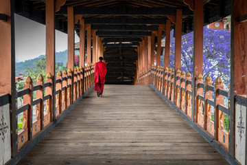 The beauty of Punakha Dzong is incomplete without its monks, drapped in red robe.
