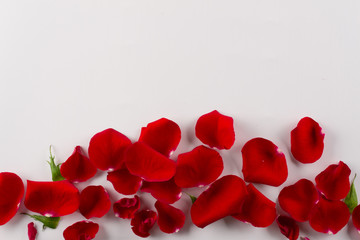Velvet red rose petals border on white background.Top view. Copy space
