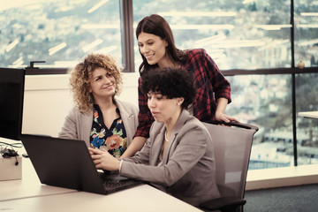 female software developers using laptop computer