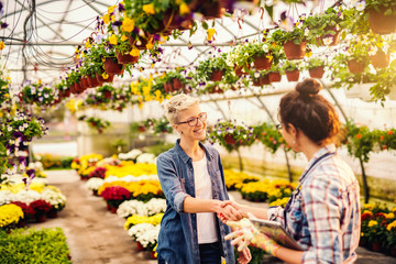 Florist holding tablet and shaking hands with happy customer. Greenhouse interior.