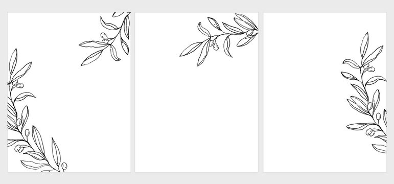 Set of 3 Green Olive Twigs Vector Illustration. Black Olive Branches Isolated on a White Background. Simple Elegant Wedding Cards. Floral Hand Drawn Arts. Illustration Without Text.