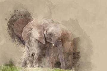 Beautiful watercolour painting of African Elephant Loxodonta Africana