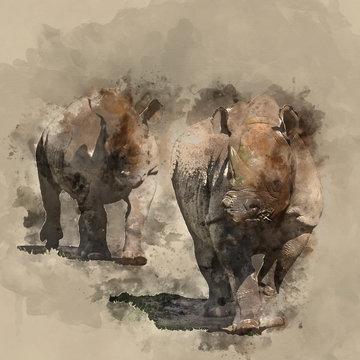 Beautiful watercolour painting of Eastern Black Rhino Diceros Bicornis Michaeli
