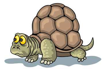 coloring pages for childrens with funny animals,turtle