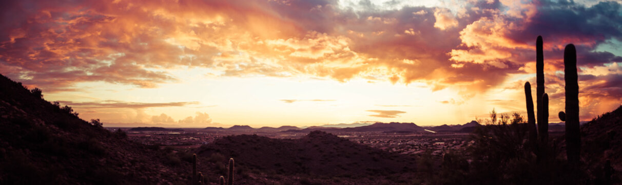 A panorama of a dramatic sunset over the desert with saguaro cactus and colorful clouds in the sky.