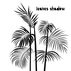 Pattern with black areca palm tropical leaves silhouette shadow isolated on white background. Vintage fabric textile, fashion summer print design