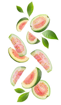 Falling guava fruits on white background
