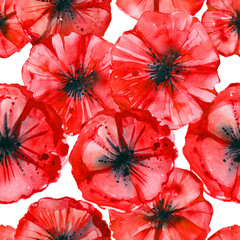 Watercolor hand drawn wild poppies seamless pattern