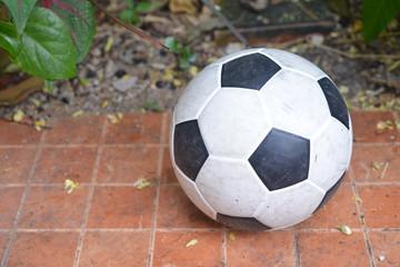 Football in the backyard