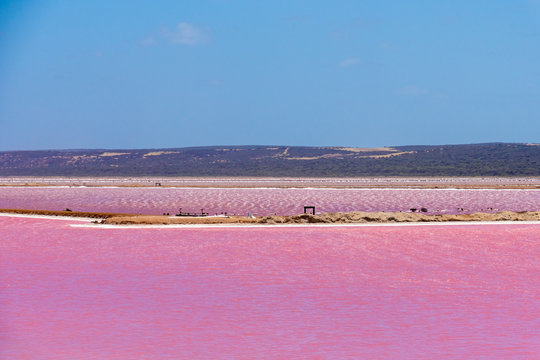 Different parts of the Pink Lake next to Gregory in Western Australia