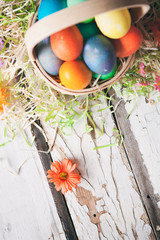 Easter: Flowers And Grass Surround Basket Of Dyed Eggs