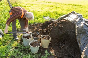 organic fertilizer in the garden