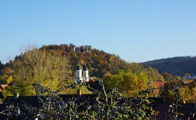 Die Burg Honberg ist die Ruine einer Gipfelburg oberhalb des Donautals auf dem gleichnamigen...