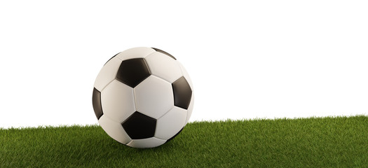 Soccer ball on grass panorama isolated white background 3d-illustration