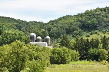 Farm in the Wooded Hills