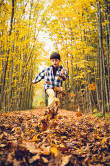 Boy playing with autumn leaves on footpath in forest