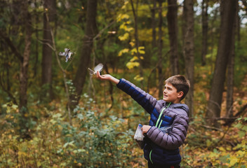 Boy feeding white breasted nuthatch in forest during autumn