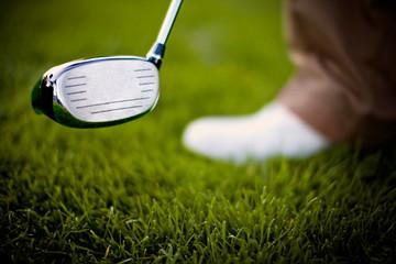 Head of a golf club above a golfing green.