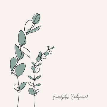Eucalyptus silver dollar & baby blue branch continuous line drawing. One line . Hand-drawn minimalist illustration, vector.