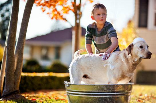 Young boy washing his dog inside a tub in the backyard.