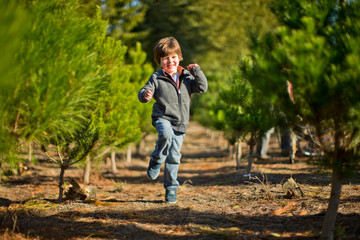 Smiling young boy skips joyfully through the rows of trees on his first visit to the Christmas tree farm.