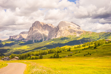 Alpe di Siusi, Seiser Alm with Sassolungo Langkofel Dolomite, a trekking walking winding path in a lush green field