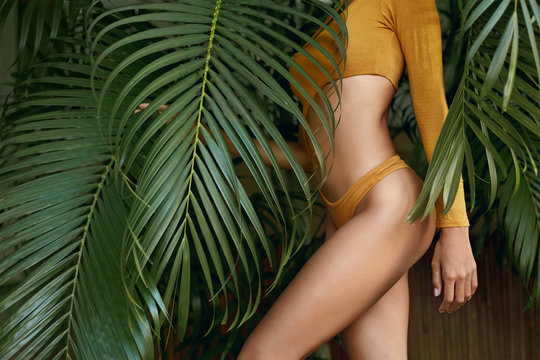 Woman's body in swimsuit at tropical nature in summer