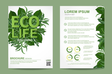 ecology brochure flyer design layout template in A4 size, eco life and green concept, Vector